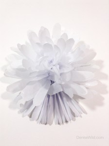 Tissue_Paper_Flowers_Craft_DIY_How_To-16