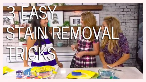EASY_STAIN_REMOVAL_HACKS
