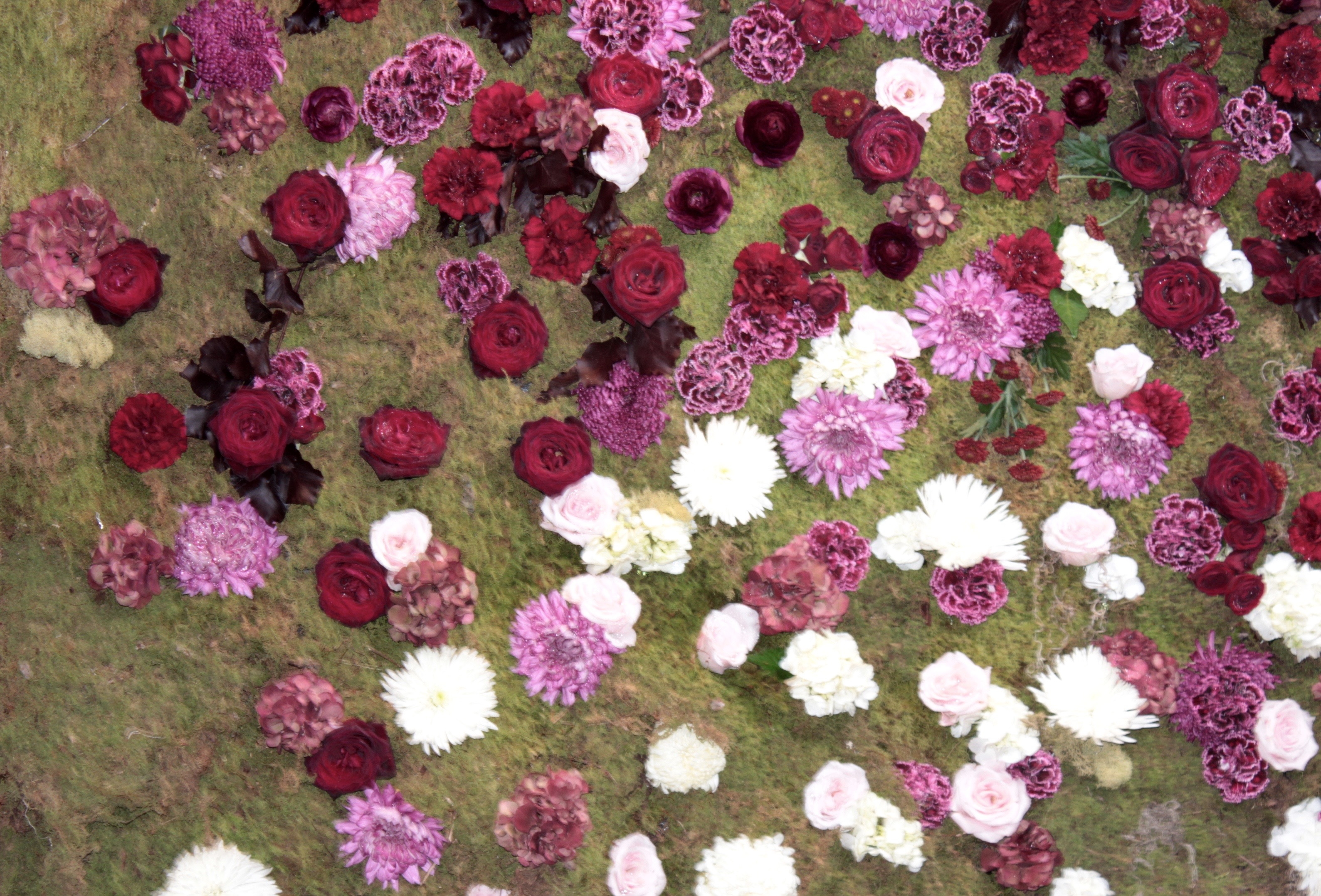 These pictures of Alison's flower wall don't do it justice